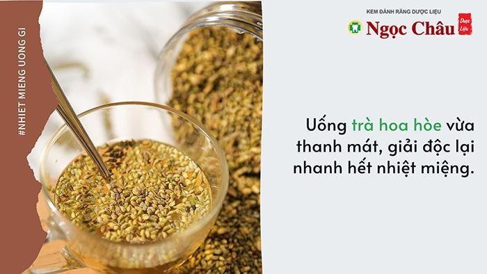 Trà Hoa Hòe có chứa Rutin có tác dụng cầm máu, kháng viêm, chống loét