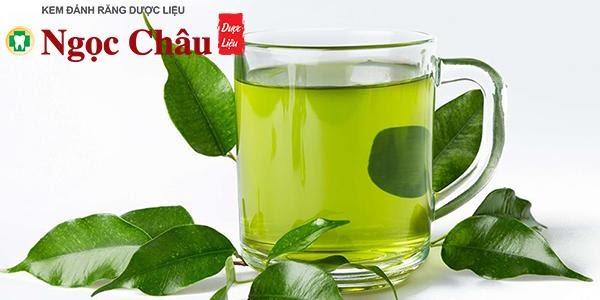 Trà xanh giàu chất chống oxy hóa, có khả năng chống viêm và kháng khuẩn hiệu quả