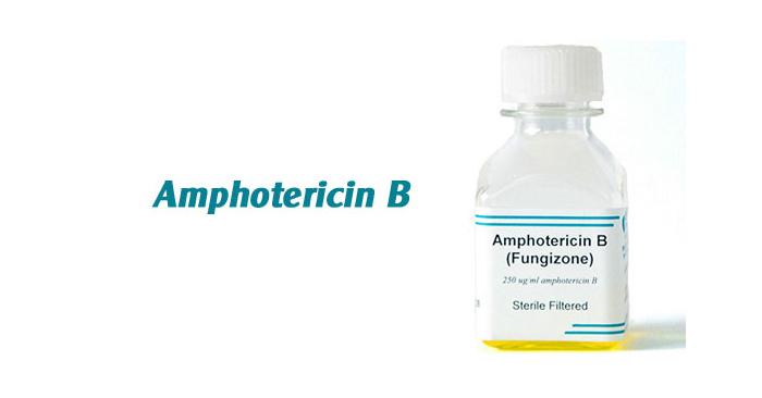 Không nên sử dụng Amphotericin B khi chưa được thăm khám và có sự chỉ định của bác sĩ