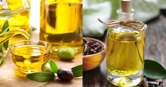 Dầu oliu kết hợp tinh dầu đinh hương